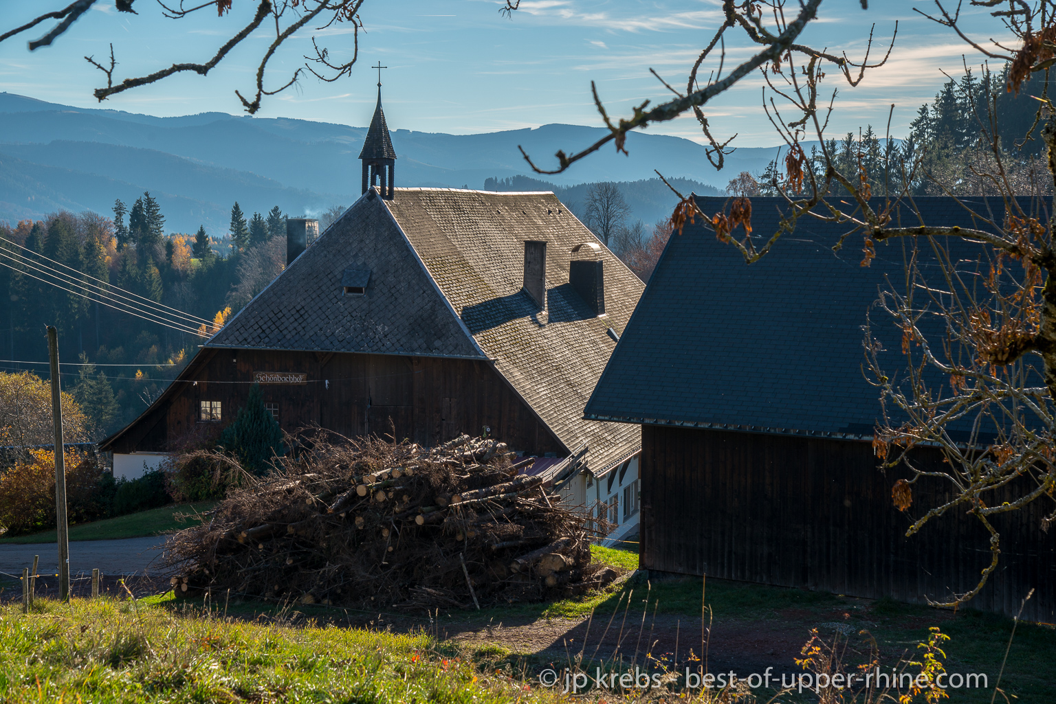 A day out in Black Forrest