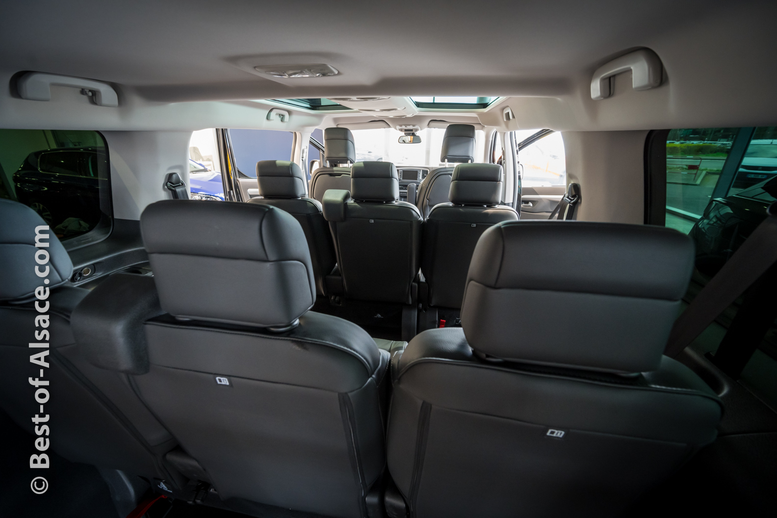 Oiseau-Migrateur-minivan-12MAR2020-7532