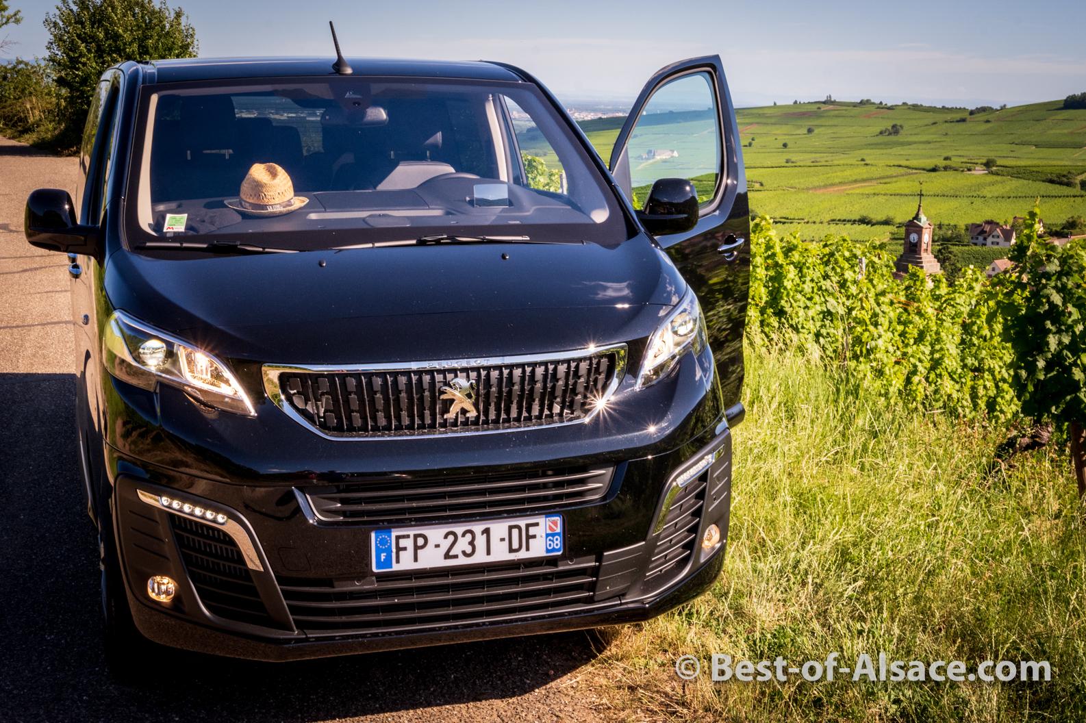 Oiseau-Migrateur-minivan-9JUL2020-4184