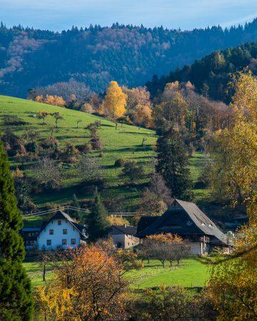 Schöner Tag im Schwarzwald & Kaiserstuhl