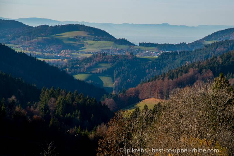 The Black Forest Mountains just across the Rhine