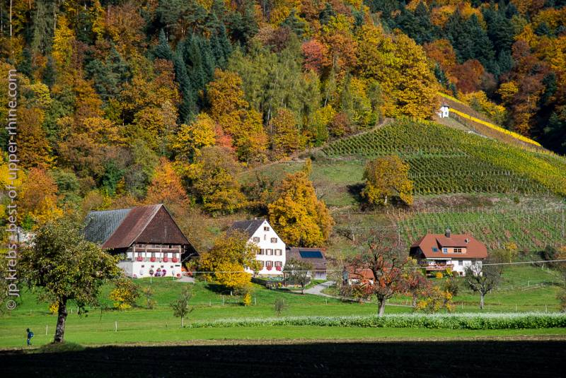Black Forest valley of Glottertal in Germany