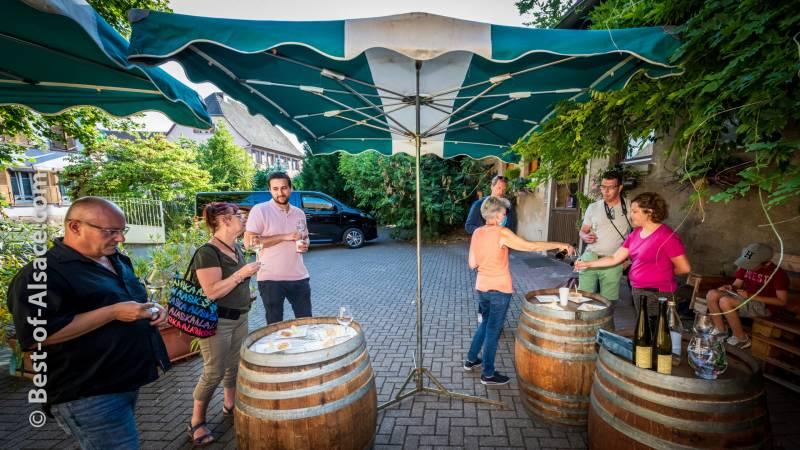 Visit a Mountain wine estate  in Alsace